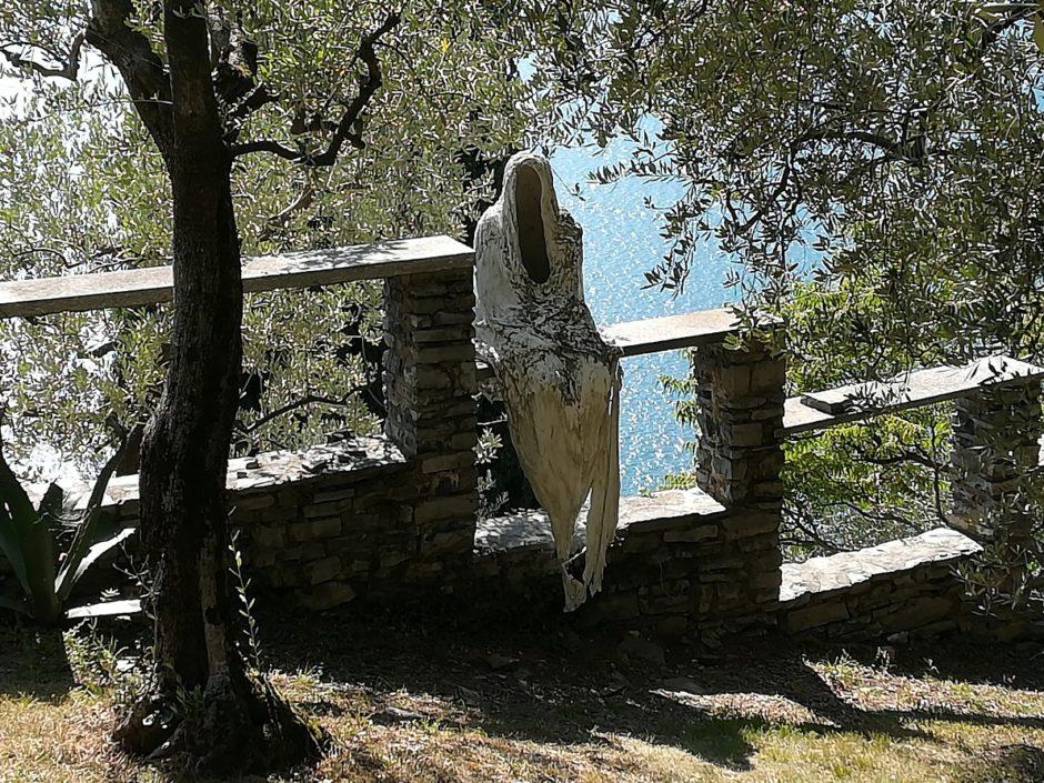 #BTV Extra – Castello di Vezio